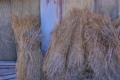 [農具小屋][小屋][納屋][ワラ][稾]農具小屋