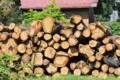[伐採木][集落][山里][山村][村里]伐採木