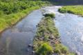[碓氷川][中瀬大橋][一級河川][利根川水系][釣り場]碓氷川