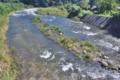 [碓氷川][増水][利根川水系][一級河川][中瀬大橋]碓氷川