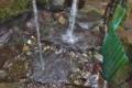 [清水][湧水][名水][源流][採水]清水