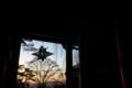 [春の総門][総門][夜明け][シルエット][妙義神社]春の総門