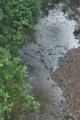 [雄川][雄川堰][延慶橋][一級河川][利根川水系]雄川