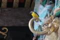 [キセキレイ][セキレイ科][本社拝殿][蜃][妙義神社]キセキレイ