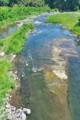 [碓氷川][一級河川][利根川水系][アユ釣り][中瀬大橋]碓氷川