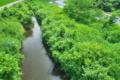 [碓氷川][一級河川][利根川水系][取水口][用水路]碓氷川