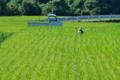 [田んぼ][田園][稲穂][農夫][軽トラ]田んぼ