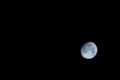 [月][十五夜][中秋の名月][月齢12.9][月夜]月