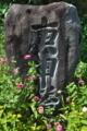 [庚申塔][庚申][石碑][ヒャクニチソウ][百日草]庚申塔