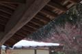 [軒下][屋根][雪][雪解け水][雪解け]軒下