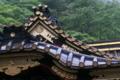 [雨の拝殿][拝殿][本社][入梅][妙義神社]雨の拝殿