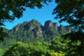 [白雲山][妙義山][天狗岩][森][ハシバミ]白雲山
