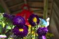 [盆が明けて][延命地蔵尊][延命地蔵][仏花][妙義神社]盆が明けて