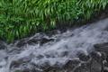 [雨水][雨天][雨の日][大牛川][妙義神社]雨水