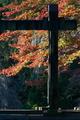 [紅葉狩り][紅葉][モミジ][釘貫門][妙義神社]紅葉狩り