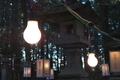 [参道][境内][白熱電球][外灯][榎下神社]参道