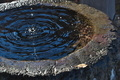 [水盤][水滴][水面][波紋][補陀寺]水盤