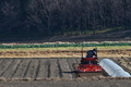 [トラクター][農耕車][作付け][圃場][下高田]トラクター
