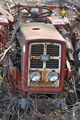 [トラクター][農耕車][耕作放棄地][荒れ地][廃車]トラクター