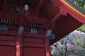 [桜][しだれ桜][シダレザクラ][総門][妙義神社]桜