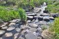 [高田川][堰堤][小川][鏑川支流][利根川水系]高田川