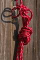 [ザイル][ロープ][綱][札所][妙義神社]ザイル