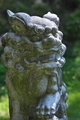 [獅子][阿形][参道][狛犬][吾妻神社]獅子