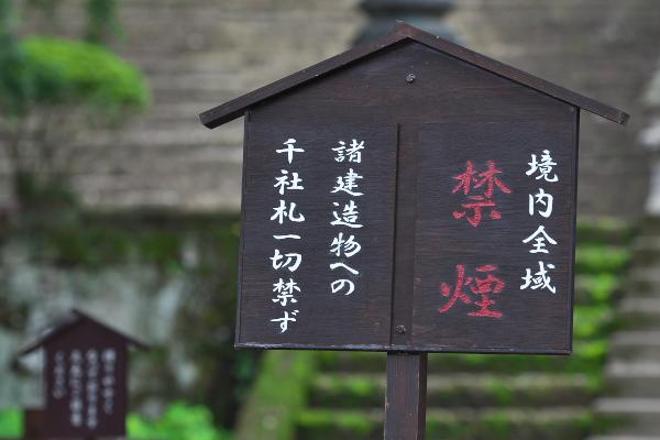 f:id:keihirota:20190715022129j:image