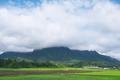 [妙義山][白雲山][コンニャク畑][山麓][大牛]妙義山