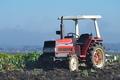 [トラクター][農耕車][圃場][ネギ畑][下高田]トラクター