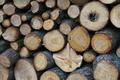 [薪][薪小屋][伐採][伐採木][五料]薪