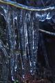 [小さなツララ][ツララ][氷柱][氷][妙義神社]小さなツララ