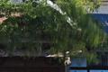 [風の強い日][ウラジロガシ][社務所][大玄関][妙義神社]風の強い日