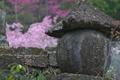 [行楽日和][石塔][桜][サクラ][妙義神社]行楽日和