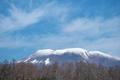[浅間山][浅間][雪冠][カラマツ][青空]浅間山
