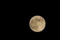 [月][満月][フラワームーン][月見][観月]月