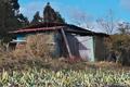 [農具小屋][小屋][納屋][ネギ畑][宮掛]農具小屋