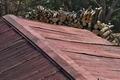 [炭焼き小屋][炭窯][トタン][赤い屋根][原]炭焼き小屋