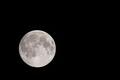 [月][満月][月夜][ピンクムーン][月見]月