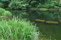 [野池][ため池][釣り堀][貯水池][原]野池