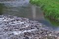 [碓氷川][一級河川][農業用水][取水口][滝名田橋]碓氷川