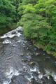 [湯川][露切峡][谷川][峡谷][豊昇]湯川