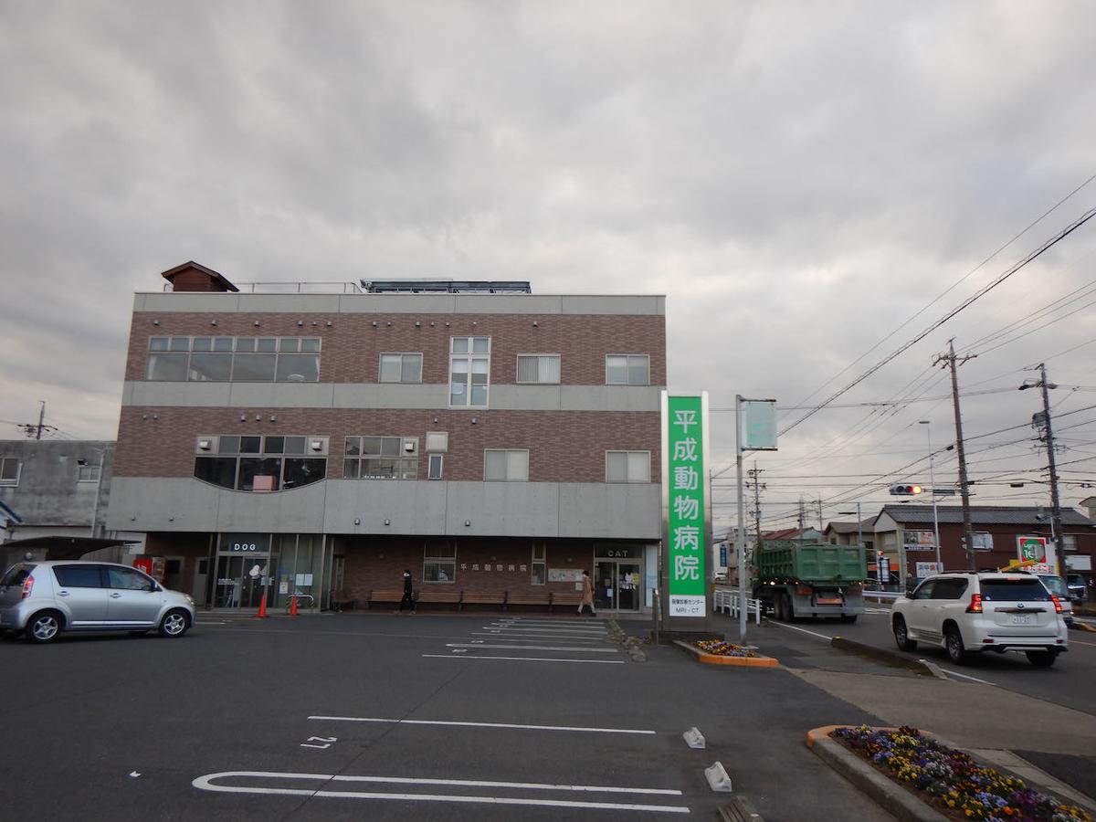 f:id:keiichi_w:20210213182339j:plain