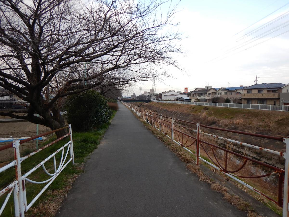 f:id:keiichi_w:20210213182429j:plain