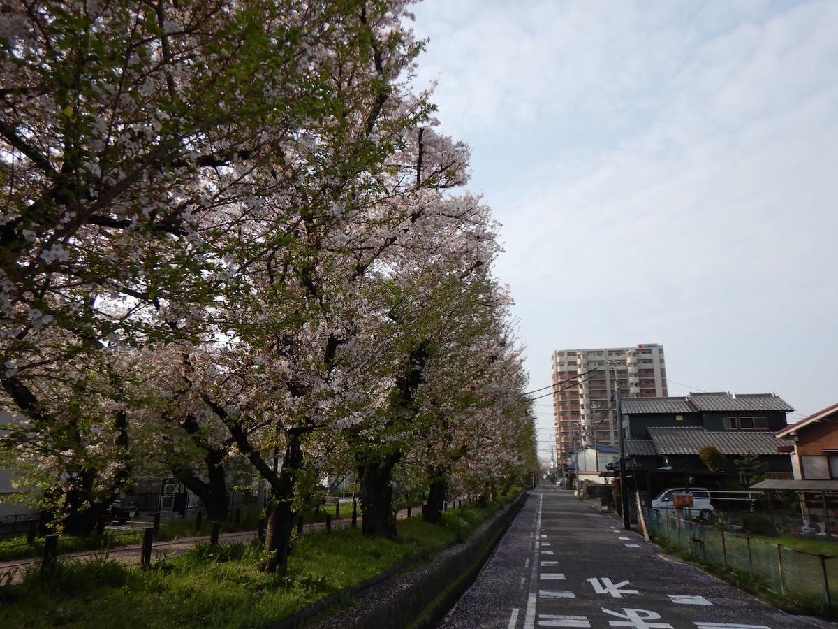 f:id:keiichi_w:20210402184746j:plain