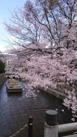 f:id:keiji-k5656:20170413141618j:image