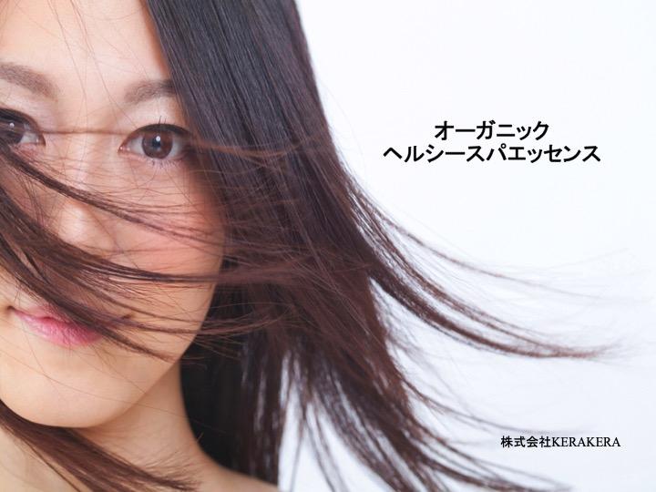 f:id:keiki_iizuka:20191205125510j:plain