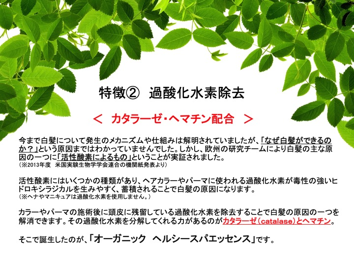 f:id:keiki_iizuka:20191205125613j:plain
