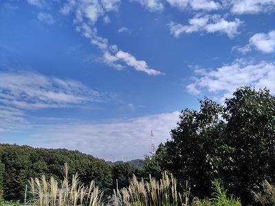 f:id:keiko-blog:20171020125857j:plain