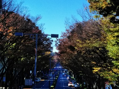 f:id:keiko-blog:20171201110125j:plain